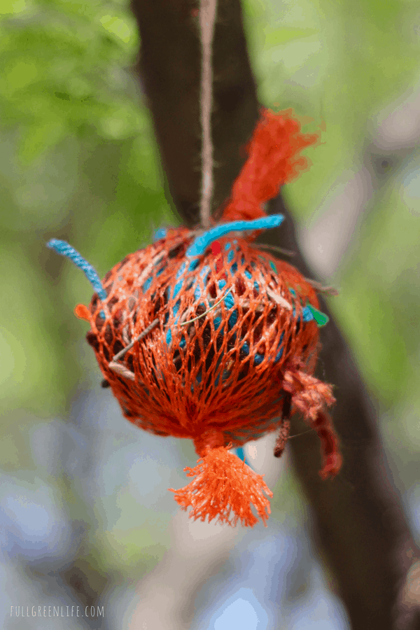 bird nest ball
