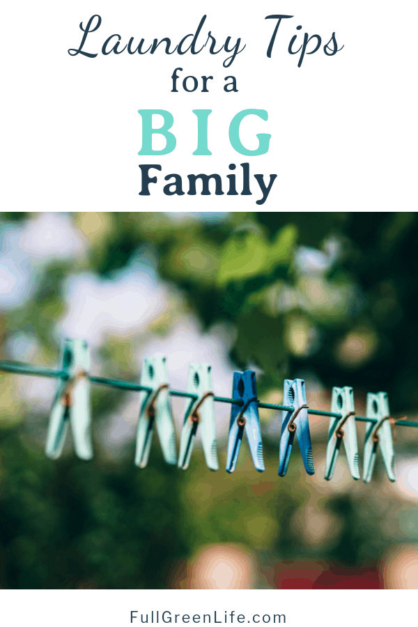 """Laundry Tips for a Big Family"" text with outdoor clothesline and colored clothes pins"