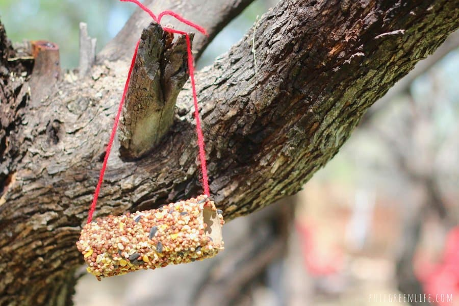 toddler diy bird feeder